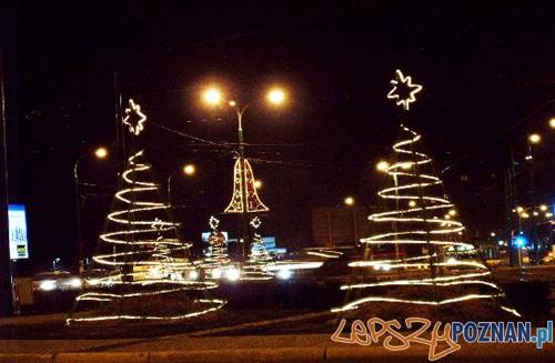 Kaponiera w świątecznym wystroju  Foto: