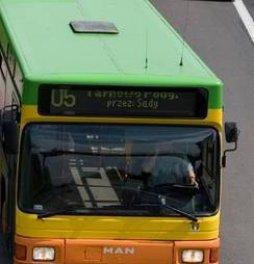bus tarnowo  Foto: