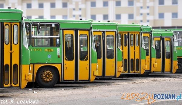 Ikarusy  Foto: MPK / K. Lesińska