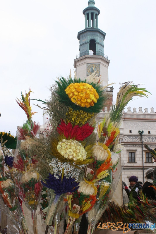 XVII Kaziuk w Poznaniu – wieleńskie palmy  Foto:
