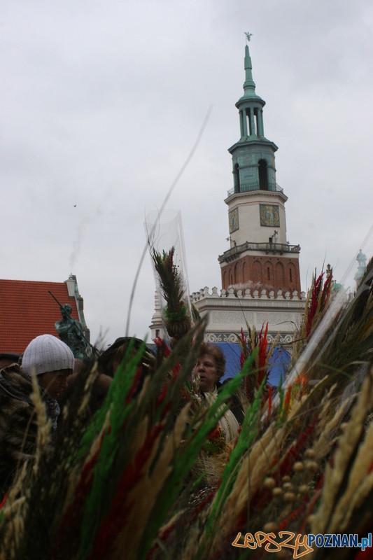 XVII Kaziuk w Poznaniu - wieleńskie palmy  Foto: