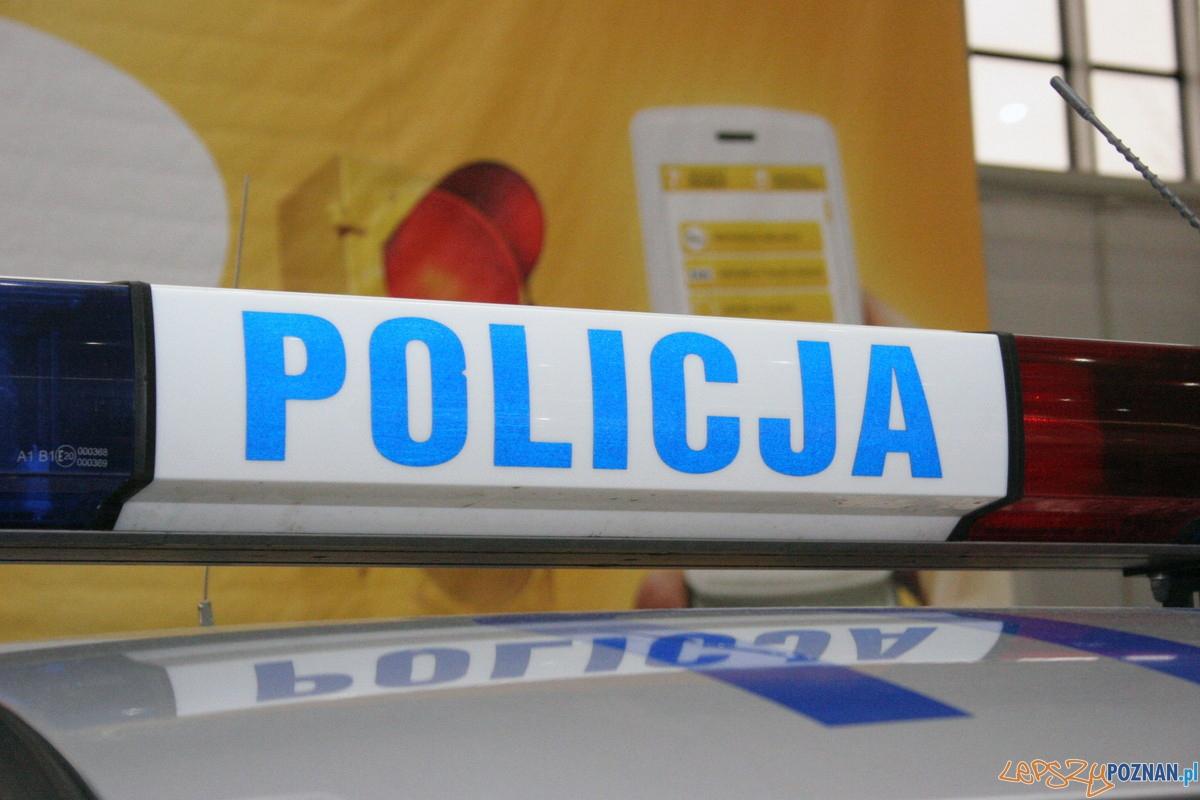 Motor Show 2010 - Policja  Foto: