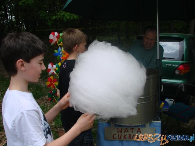 foto: lepszyPOZNAN - rodzinny festyn w antoninku  Foto: