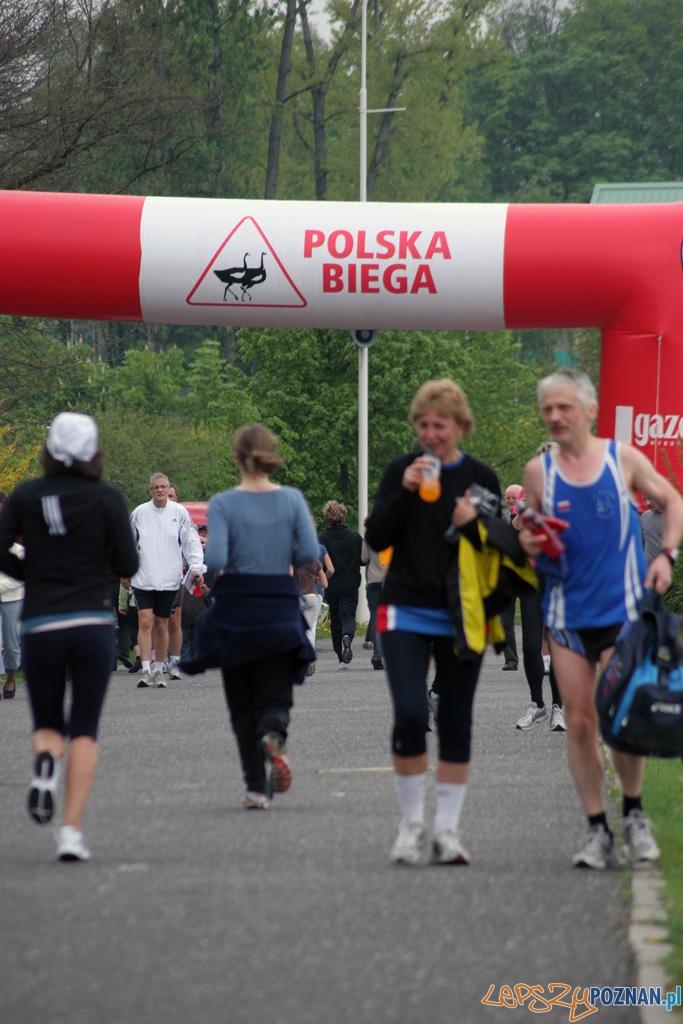 Polska Biega - Poznań, jezioro Maltańskie 8.05.2010 r.  Foto: Piotr Rychter