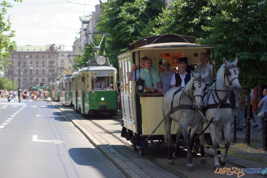 130 lat MPK w Poznaniu  Foto: Paweł Rychter