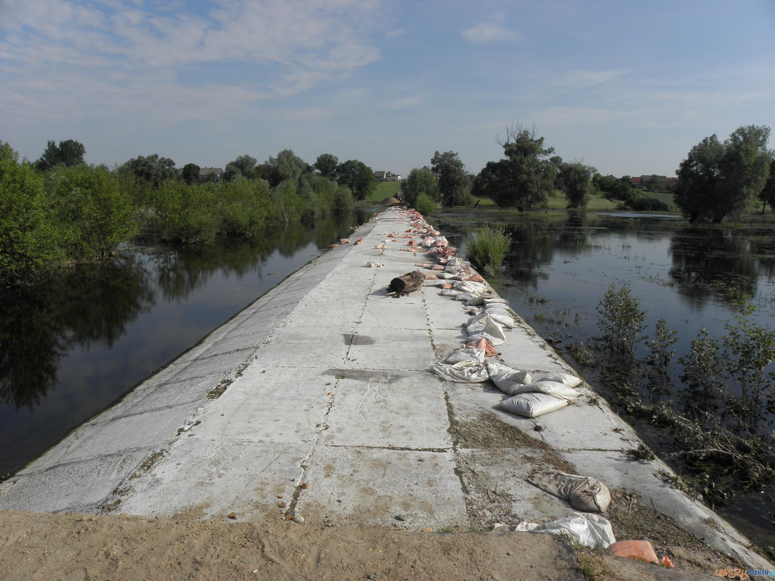 polder Golina  Foto: Wielkopolski Urząd Wojewódzki