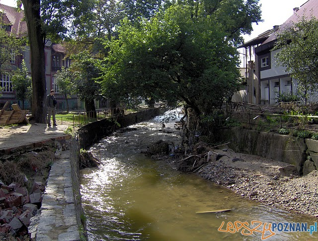 Bogatynia i rzeka, która ją zniszczyła  Foto: Karla