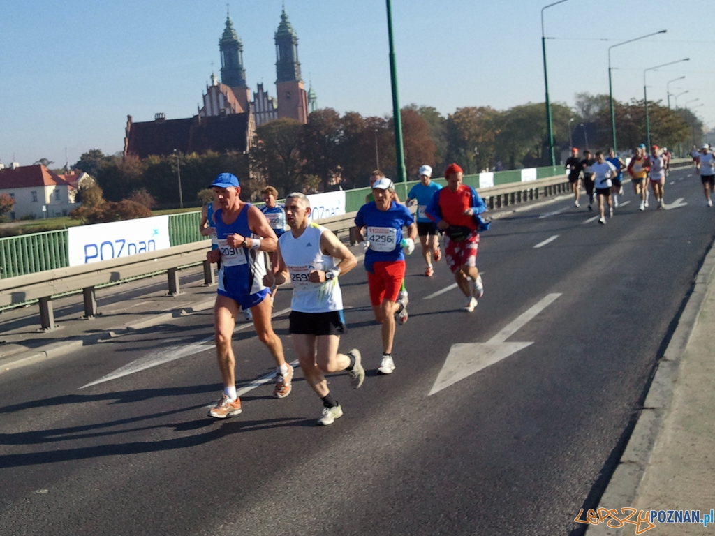 11. Poznań Maraton - Poznań 10.10.2010 r.  Foto: gsm Asia