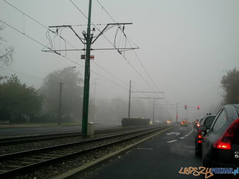 Poranna mgła w Poznaniu  Foto: Pablo