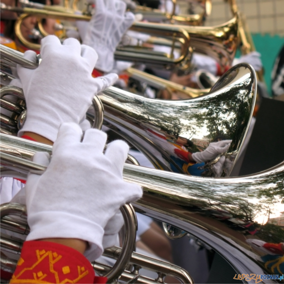 orkiestra  Foto: sxc