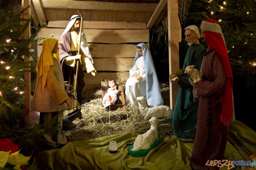 Szopki bożonarodzeniowe - Kościół św. Józefa - karmelitów bosych  Foto: Piotr Rychter