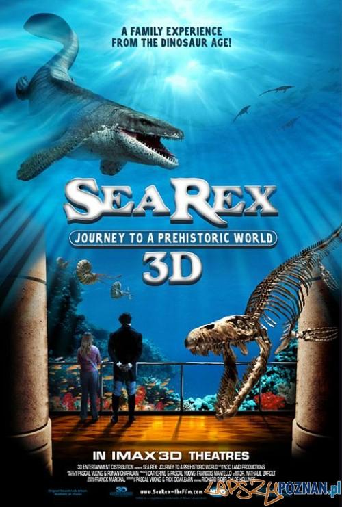 sea rex 3d  Foto: sea rex 3d