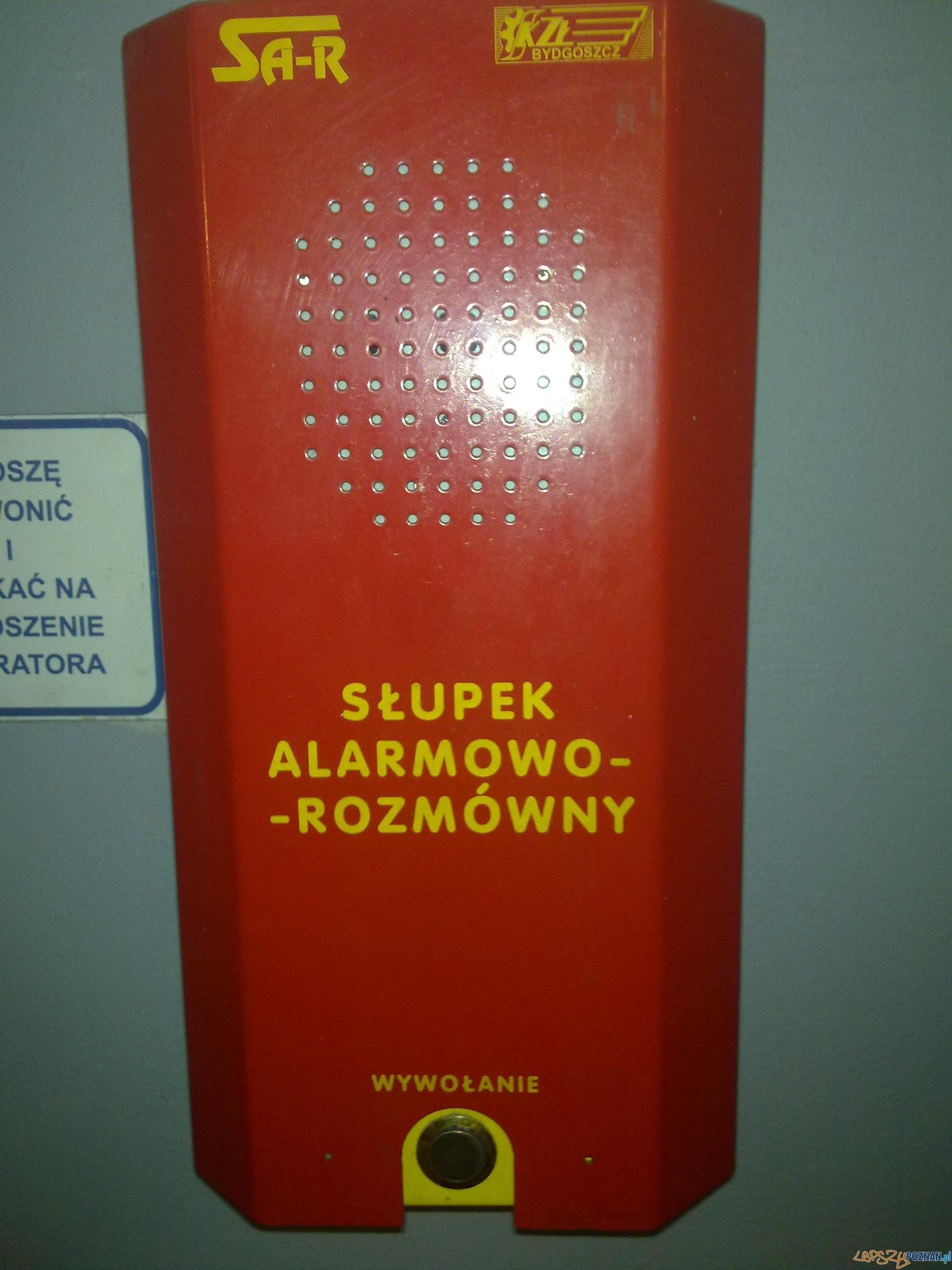 Słupek alarmowo rozmówny  Foto: