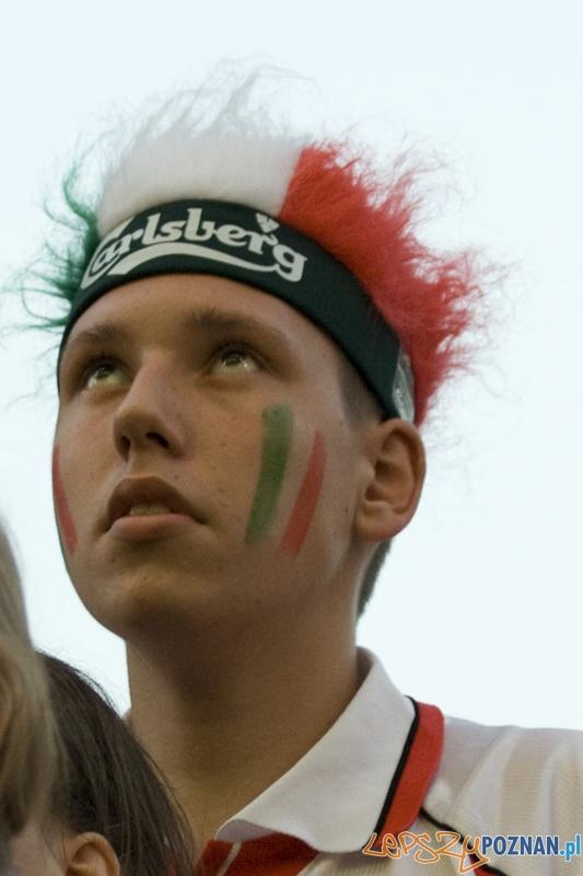 Strefa Kibica podczas finałowego meczu Euro 2012 Hiszpania - Włochy - Poznań 01.07.2012 r.  Foto: Ewelina Gutowska
