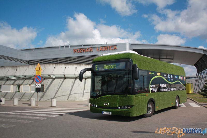 Elektryczny Solaris_Urbino_w Poznaniu  Foto: materiały prasowe