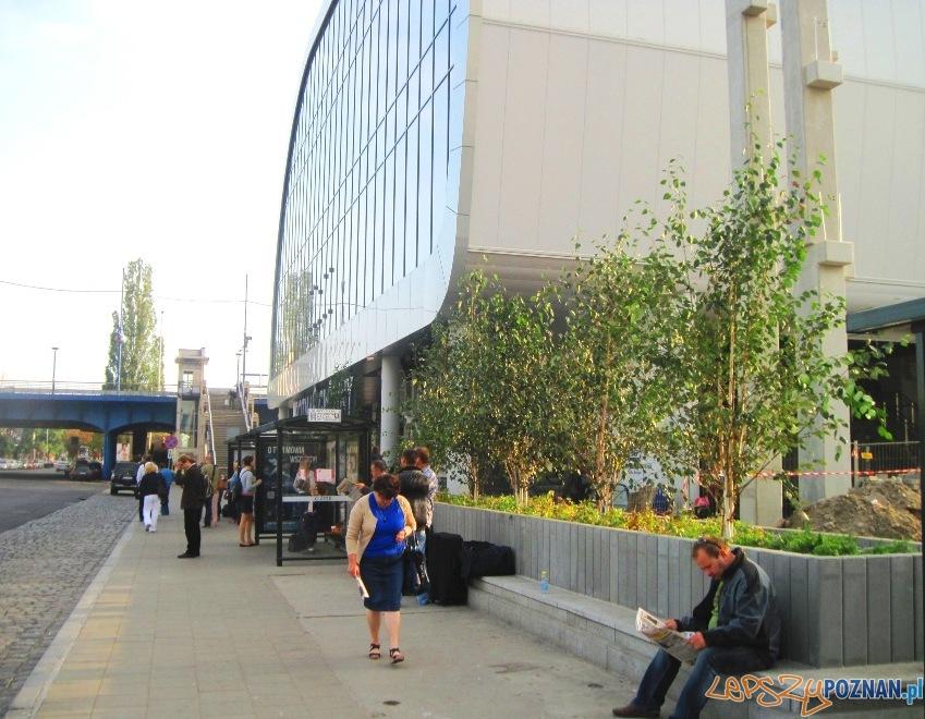 zieleń przy nowym dworcu PKP  Foto: