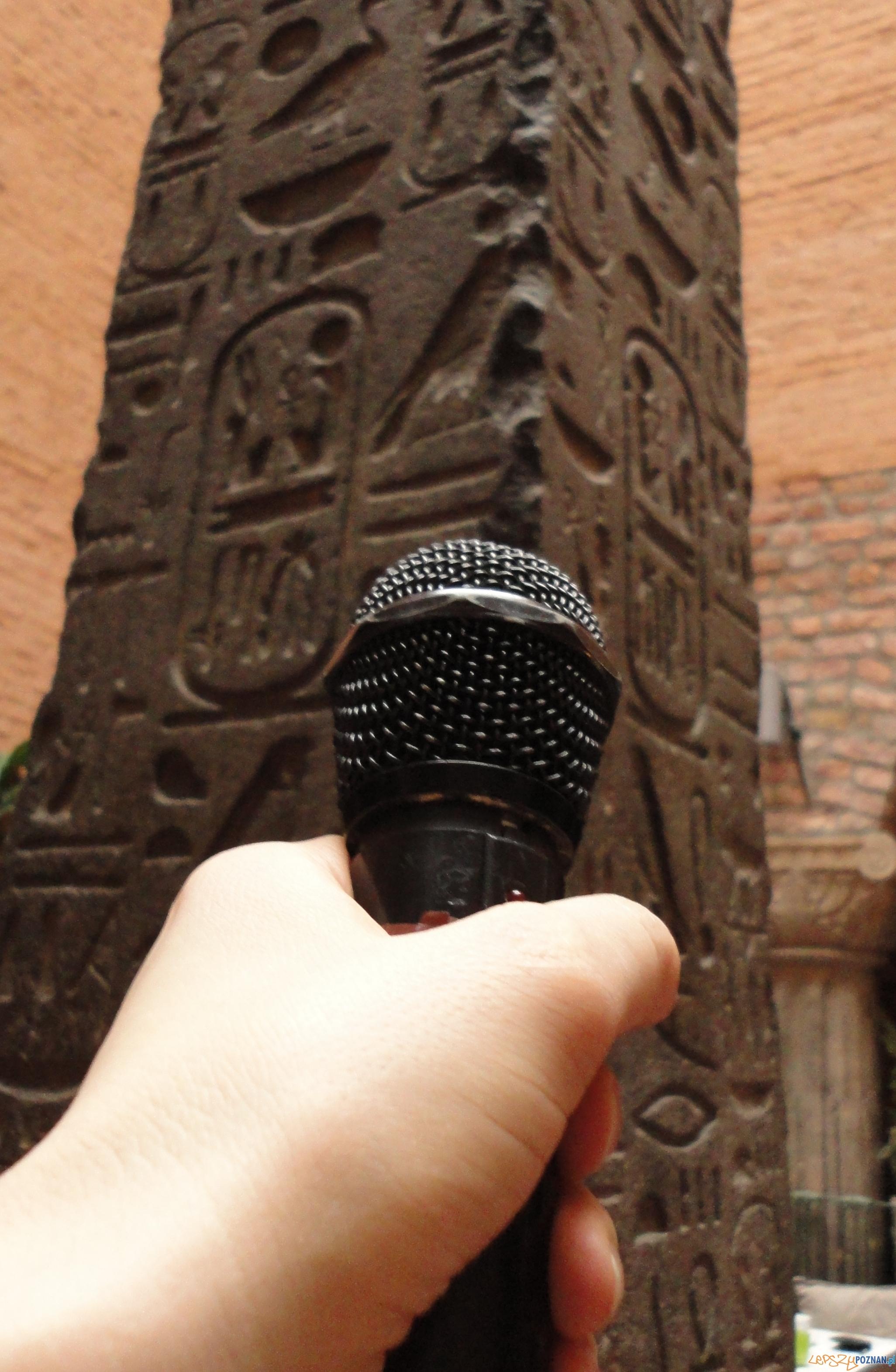 cykl muzealnych podcastów prezentujących bieżące wydarzenia w Muzeum  Foto: Muzeum Archeologiczne w Poznaniu