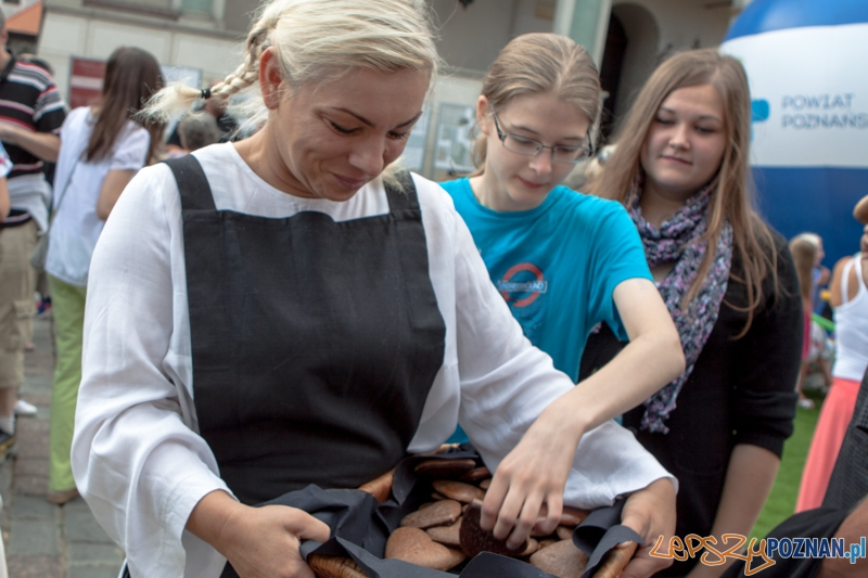 Festiwal Dobrzego Smatuk 2013 - Poznań 15.08.2013 r.  Foto: LepszyPOZNAN.pl / Paweł Rychter