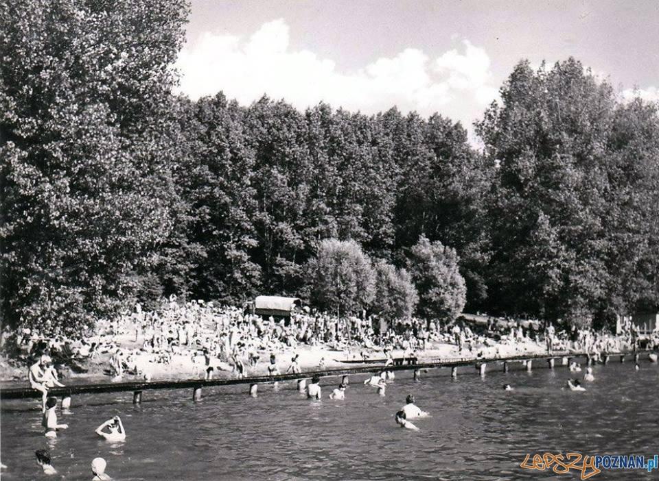 Kąpielisko w Kiekrzu - 1965 rok  Foto: Kąpielisko w Kiekrzu - 1965 rok