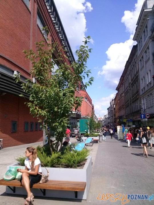 Nowa zieleń na Półwiejskiej  Foto: ZDM