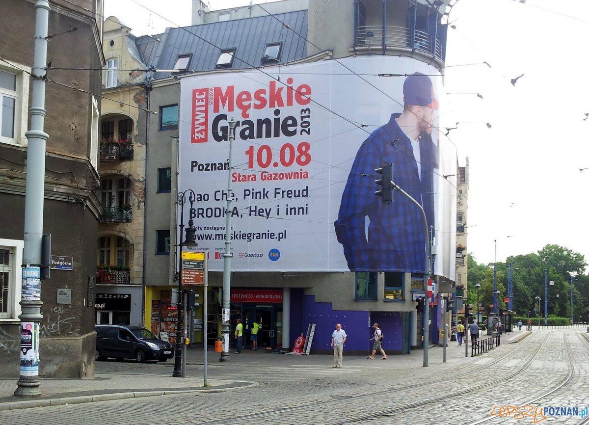 Malpka na szkolnej  Foto: facebook/Ulica Wrocławska - Poznań