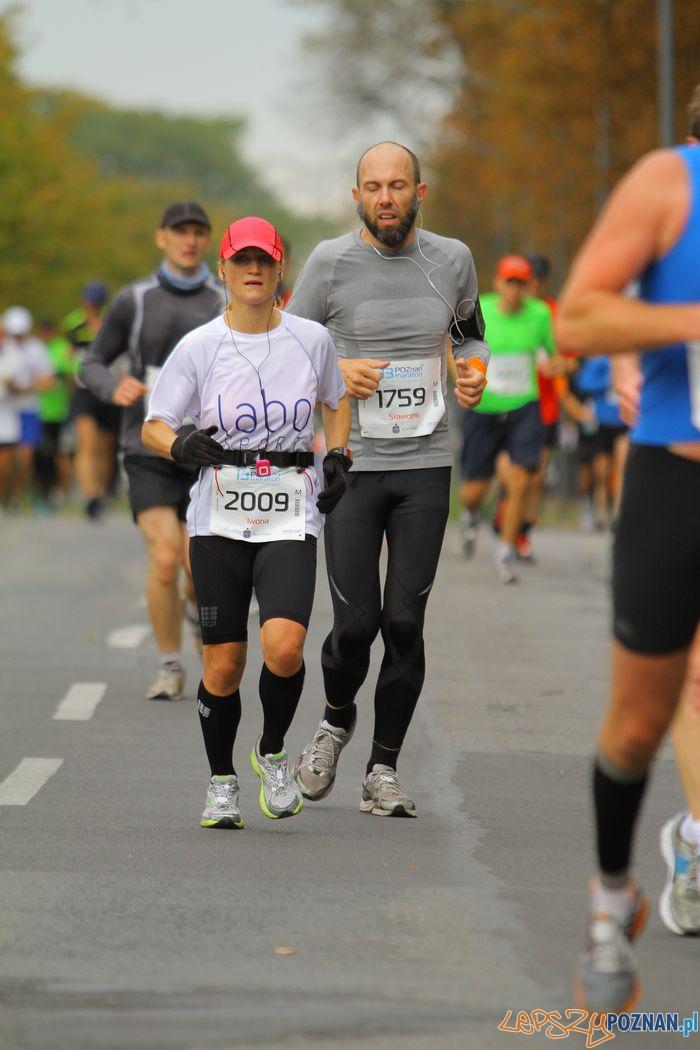 Iwona Guzowska na trasie 13. Poznań Maraton  Foto: materiały prasowe