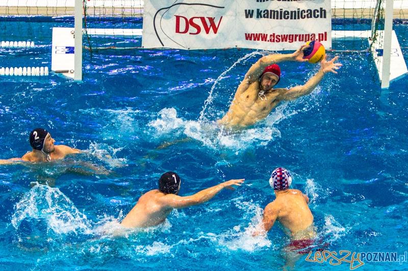 PP: DSW Waterpolo Poznań - Arkonia Szczecin 13:9 - Poznań 05.10.2013 r.  Foto: LepszyPOZNAN.pl / Paweł Rychter