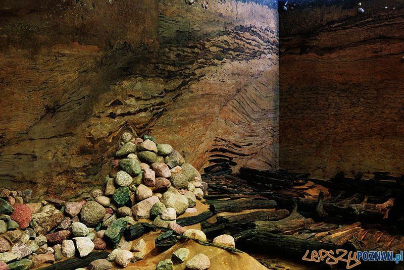 Rezerwat archeologiczny na Ostrowie Tumskim  Foto: Kateriny Zisopulu-Bleja