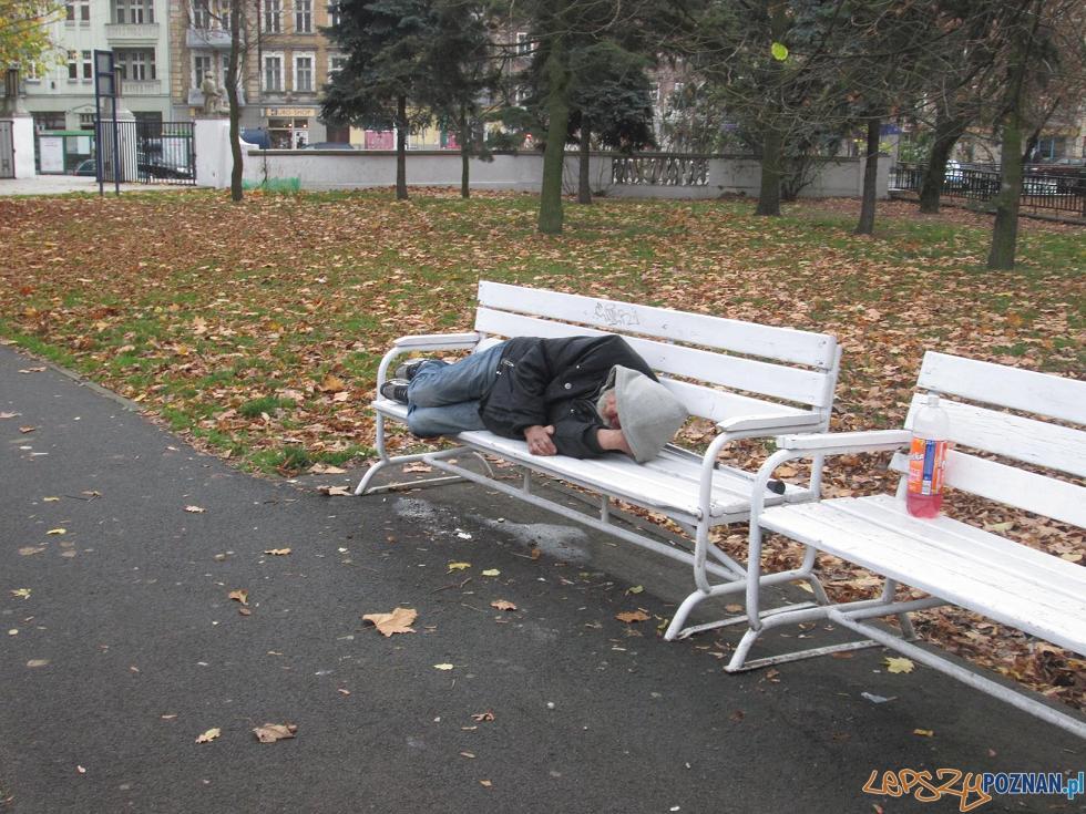 Bezdomny w parku  Foto: czytelnik