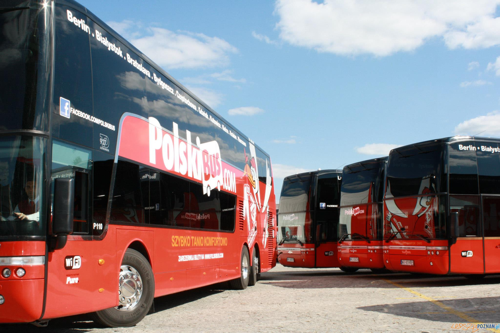 Polski Bus autokary  Foto: mat.prasowe