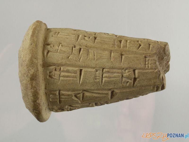 Tabliczki z pismem klinowym na wystawie w Muzeum Archeologicznym  Foto: P.Silska - Muzeum Archeologiczne w Poznaniu