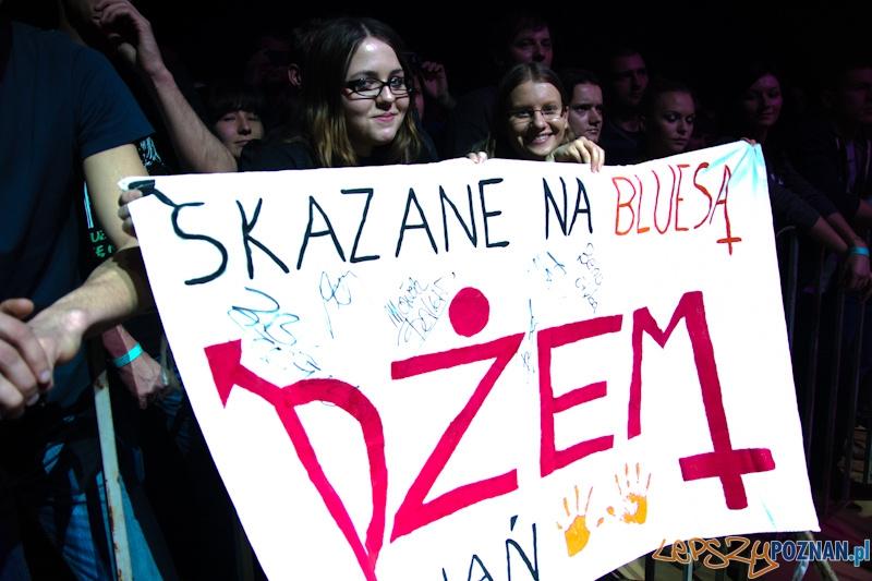 Zespół Dżem w Poznaniu  Foto: (c) Anna Bernard