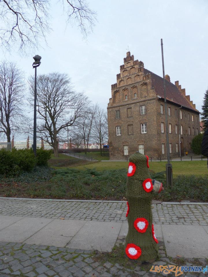 Biało-czerwony hydrant  Foto: Aquanet