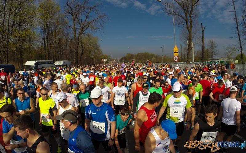 7. Poznań półmaraton  Foto: lepszyPOZNAN.pl / Piotr Rychter