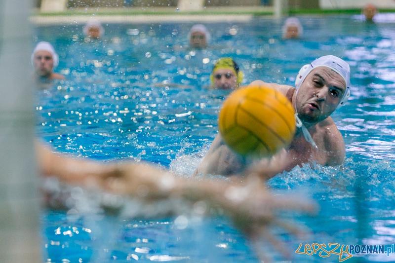 DSW Waterpolo Poznań - ŁSTW Uniwersytet Łódzki (Tomasz Różycki)  Foto: lepszyPOZNAN.pl / Piotr Rychter