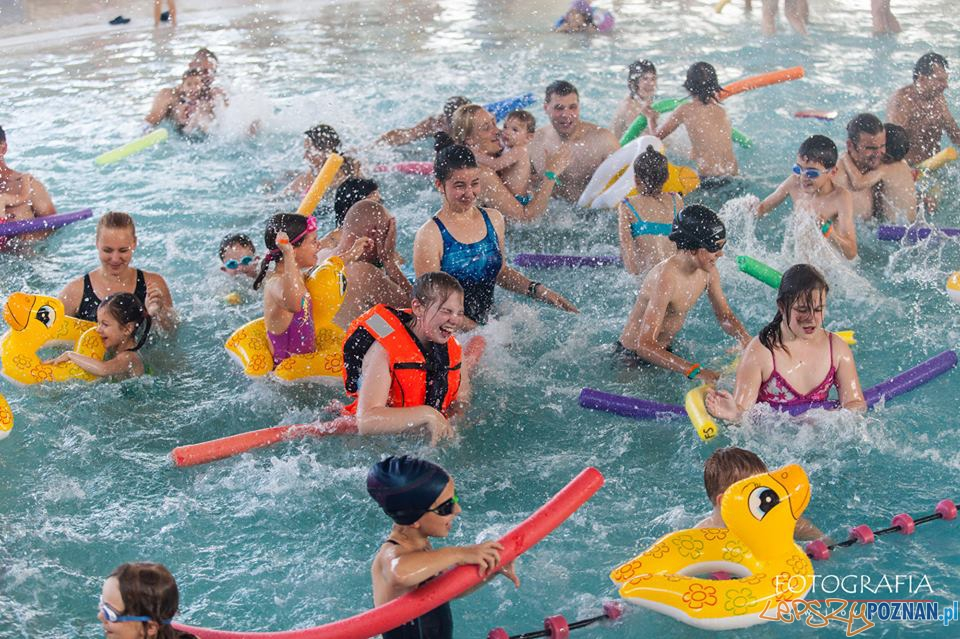 Zabawa z Fregata Swimming  Foto: