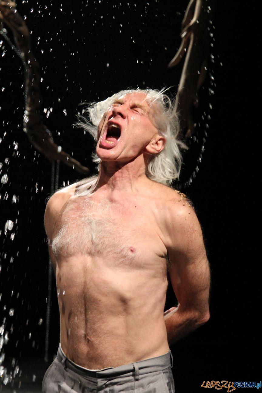 Egzorcyzmy Święte Krowy spektakl w Teatrze 8 dnia  Foto: Krzysztof Fabiański