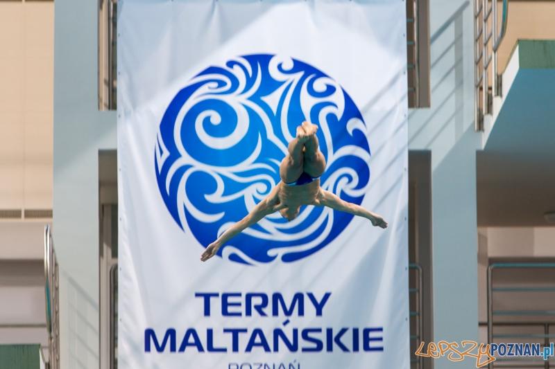 3 lata Term Maltańskich  Foto: lepszyPOZNAN.pl / Piotr Rychter