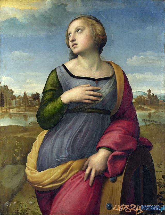 Św. Katarzyna pędzla Rafaela Santi, domena publiczna  Foto:
