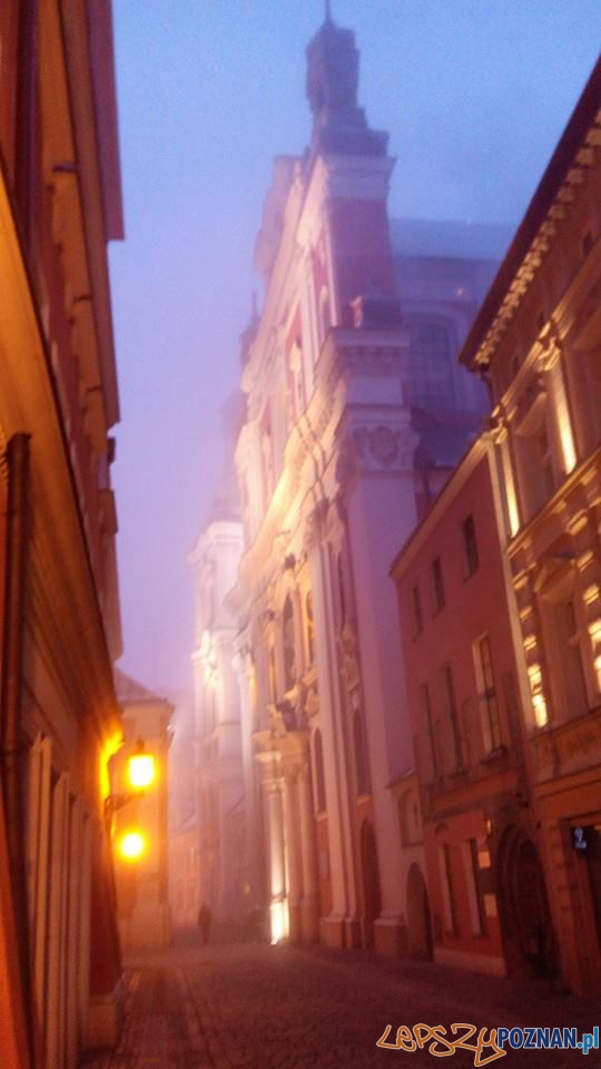 Poranna mgła  Foto: lepszyPOZNAN / Piotr Rychter