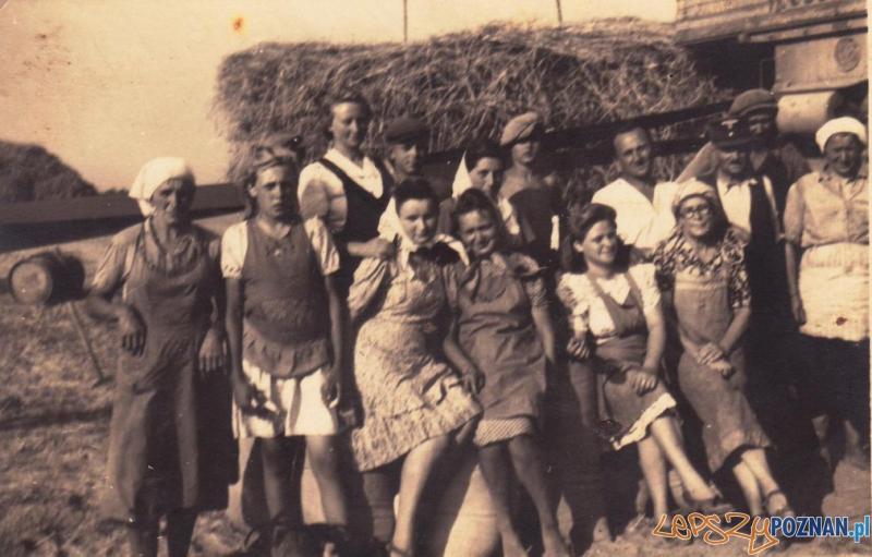 Sierpień 1943 r., u Olgi Volz. Archiwum rodzinne Łucji Ostrowskiej  Foto:
