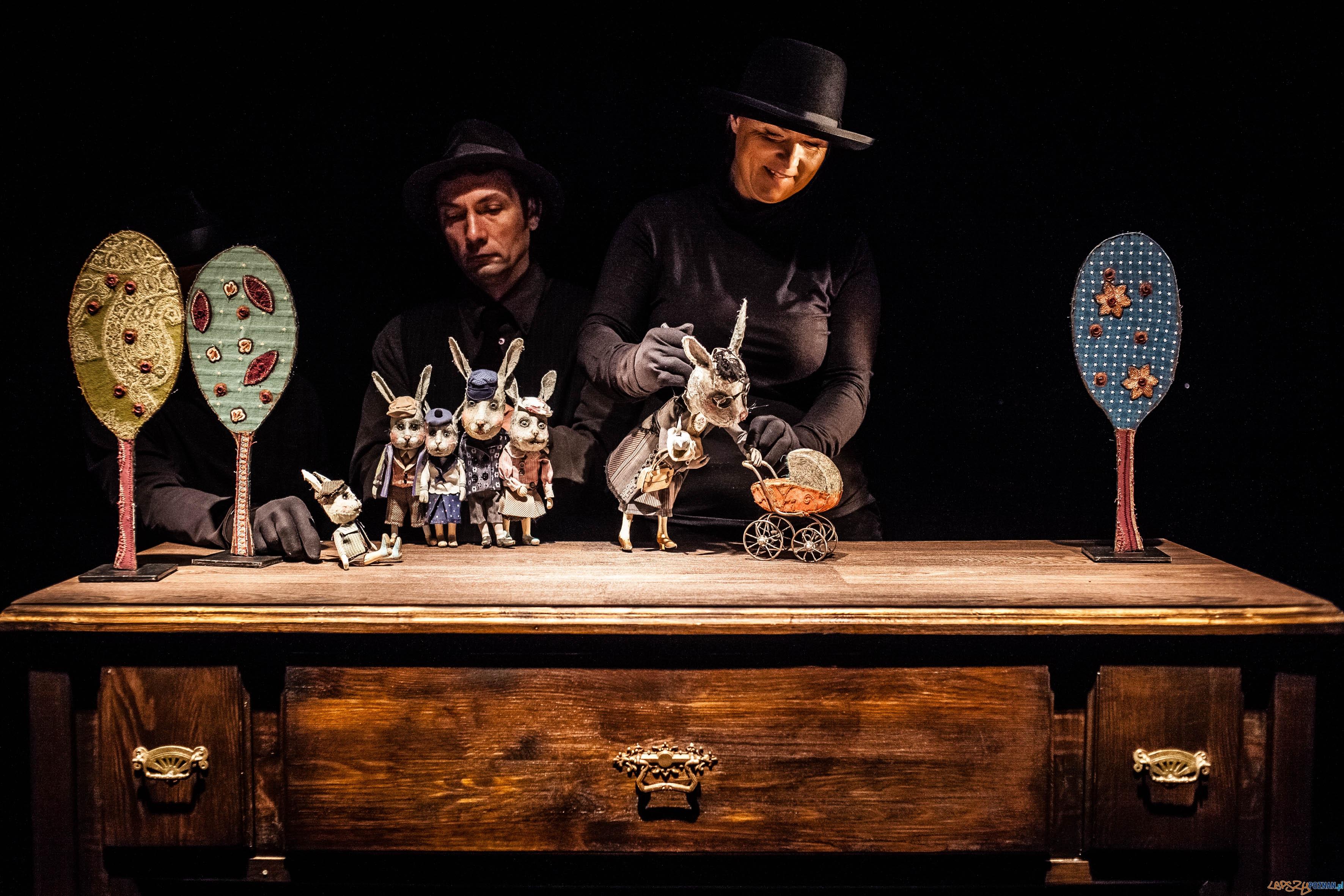 A niech to Gęś kopnie - spektakl Teatru Animacji (8)  Foto: Bartłomiej Jan Sowa