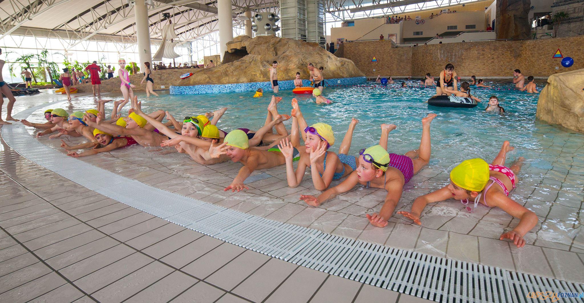 Szkoła pływania Fregata Swimming  Foto: facebook