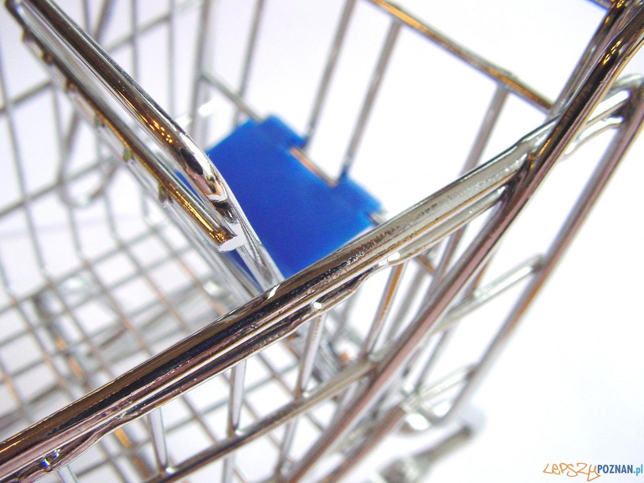 zakupy koszyk  Foto: sxc / Suzanne van Hattum