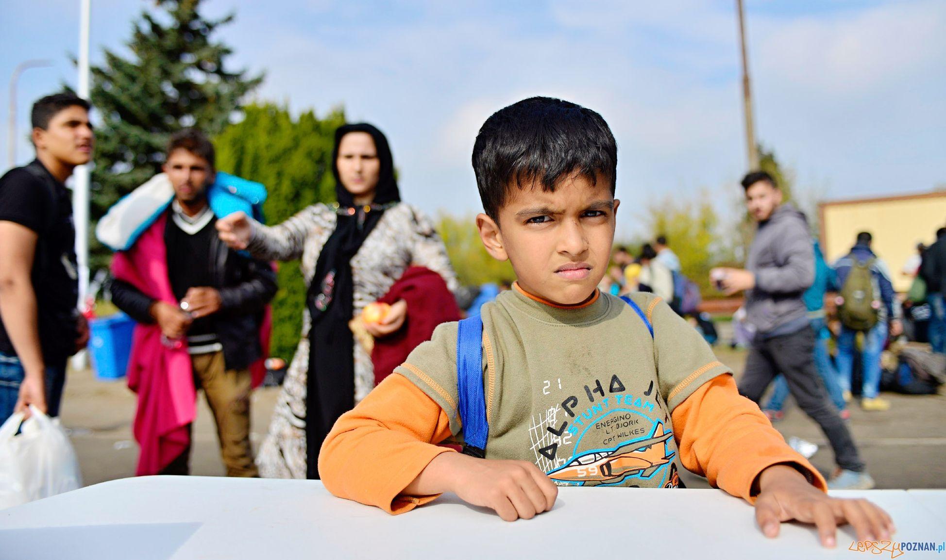 Uchodźcy - za czy przeciw. Debata oksfordzka w SWPS  Foto: istock/SWPS