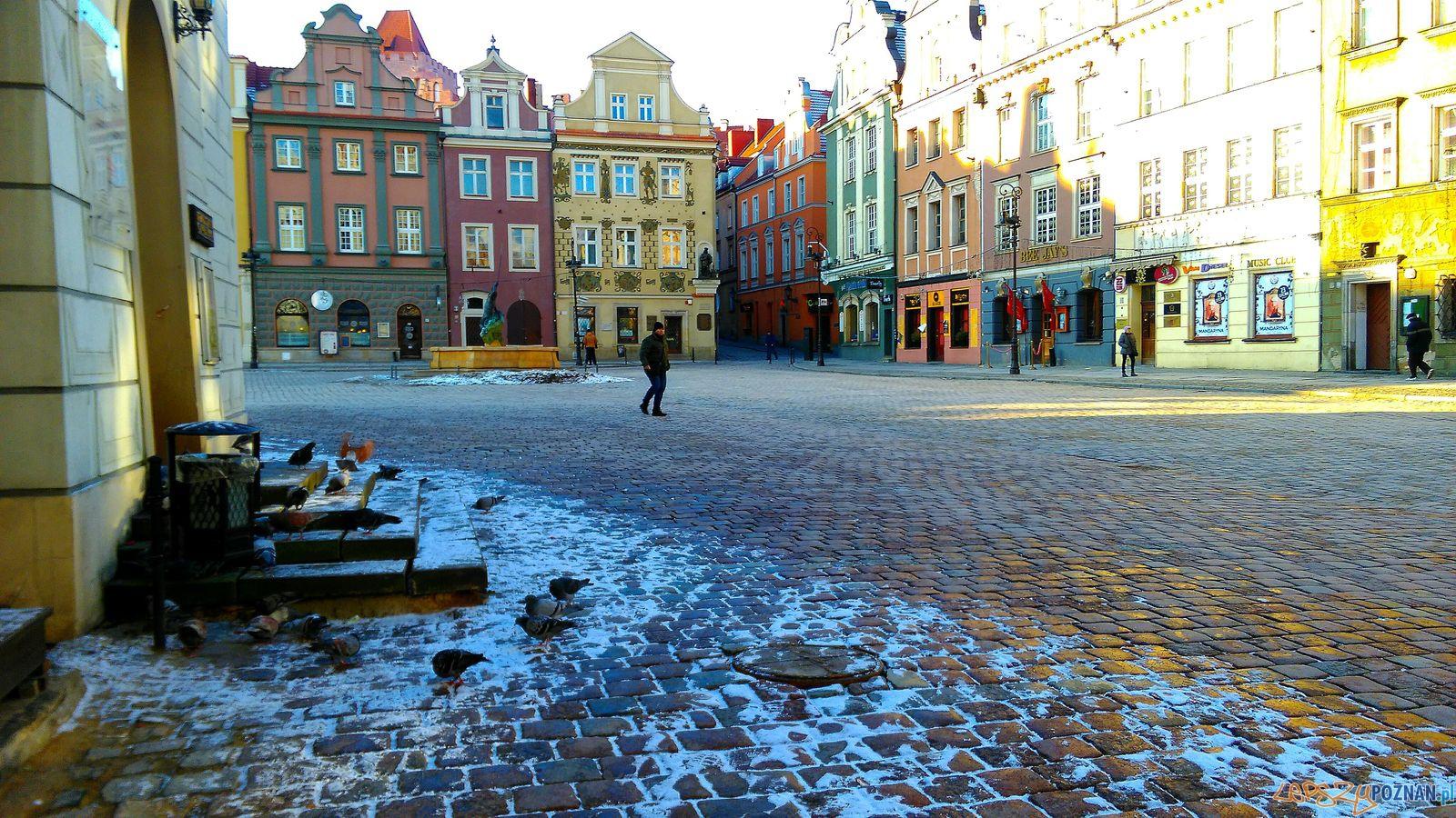 Stary Rynek - zimą  Foto: Tomasz Dworek