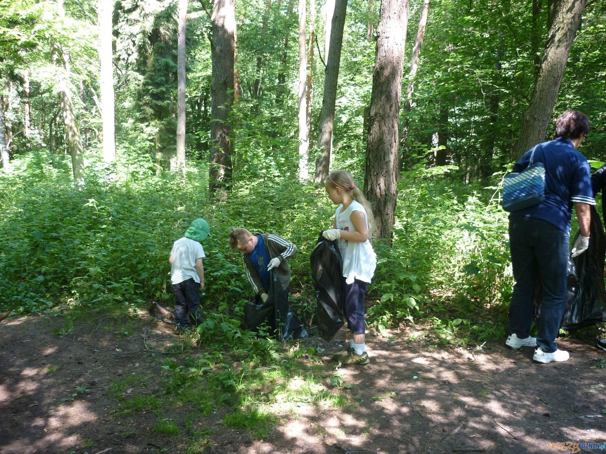 Sprzątanie tuleckiego lasu  Foto: UMiG Kleszczewo