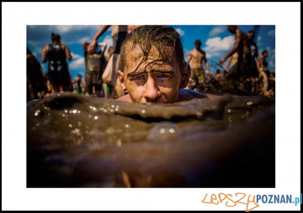 Woodstock  Foto: Grzegorz Dembiński