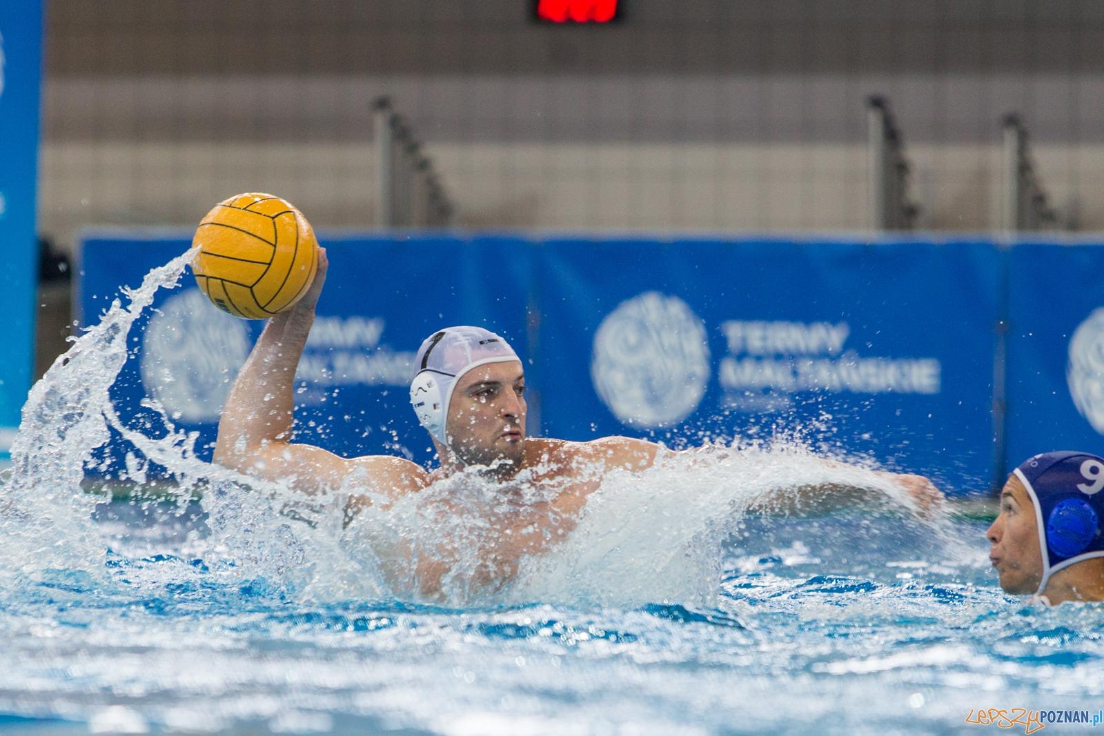 KS Waterpolo Poznań - Budapesti Honvéd Sport Egyesület  Foto: lepszyPOZNAN.pl / Piotr Rychter