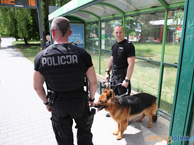 Kejter też... szkieł  Foto: KWP w Poznaniu